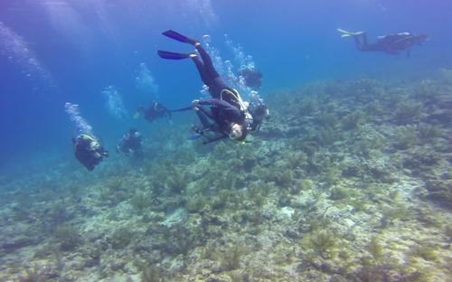 FL-12-26-Dive-A-N-05
