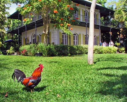 Key west-Hemingway Home