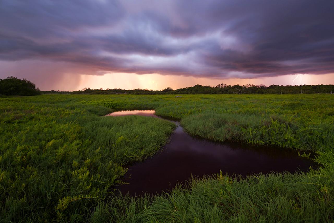 Everglades-02b