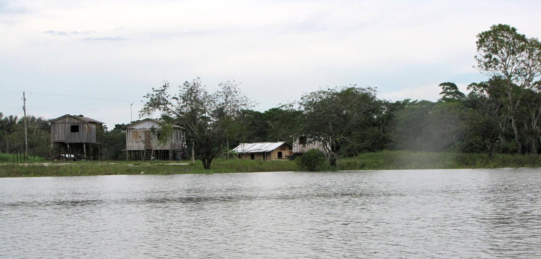 AMAZONIA-WEB-001f