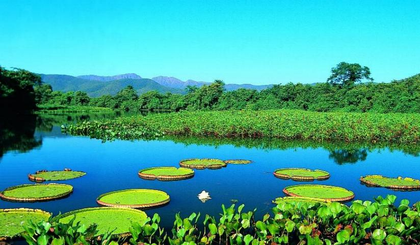 Pantanal-04